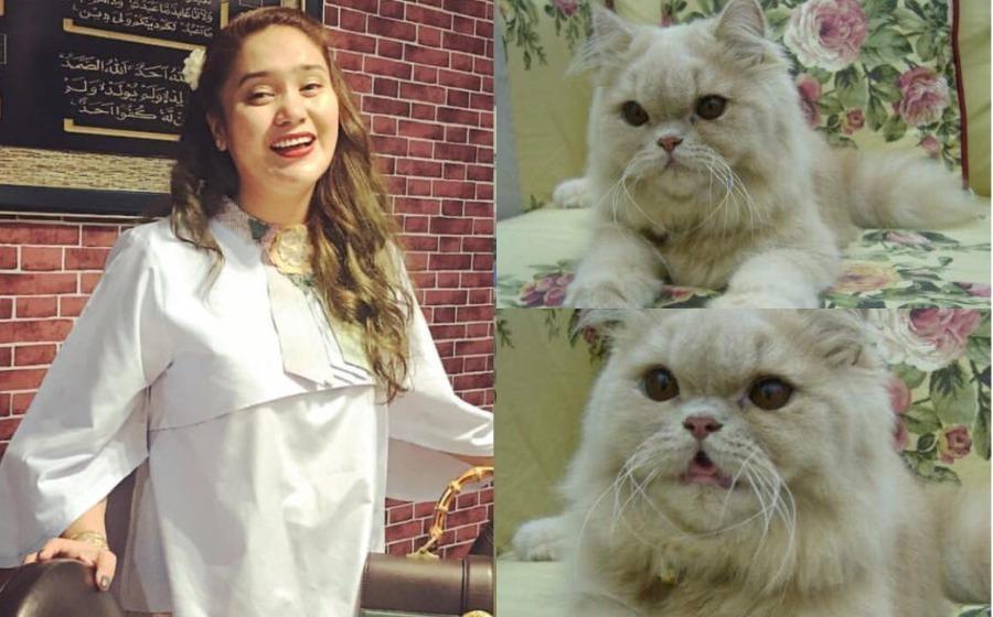 """""""Whitey Dah Macam Ahli Keluarga Kami"""" - Azharina Sanggup Berhabis Demi Kucing Kesayangan"""