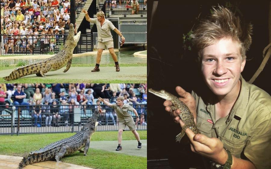 Bapa Borek Anak Rintik Anak Teruna Crocodile Hunter Teruskan Legasi Bapa Selepas 15 Tahun Artikel Gempak