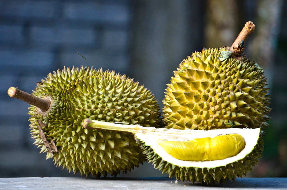 eating durian is one of the best things you can do for your body