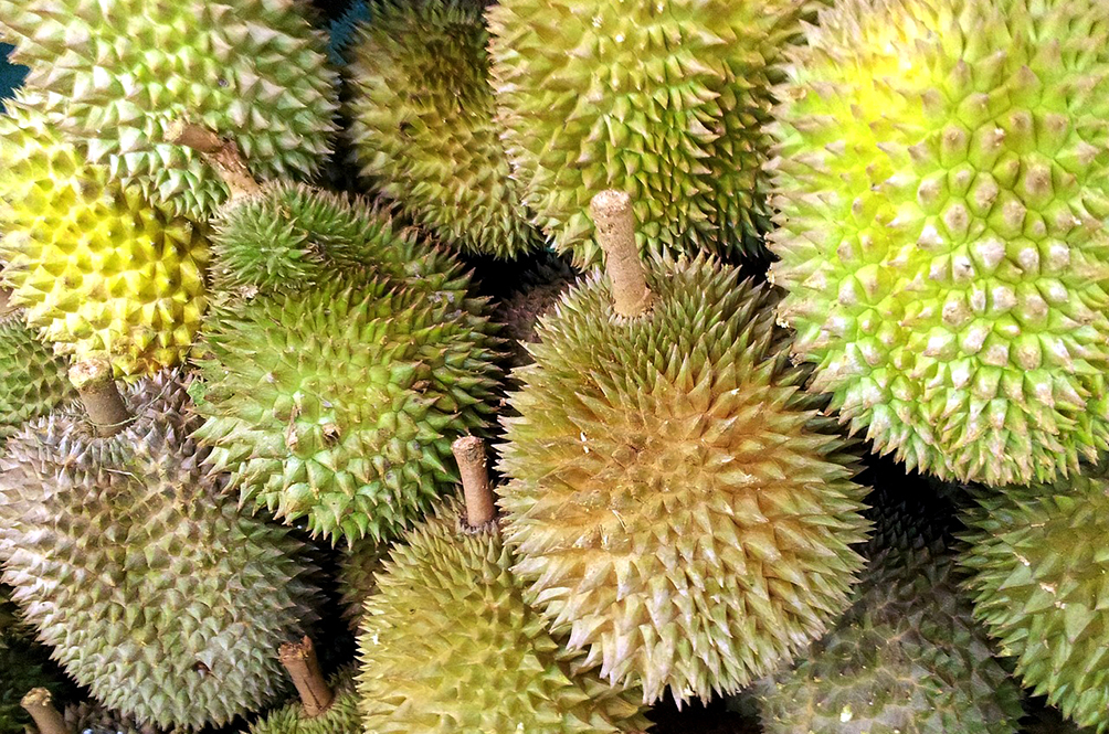 This Saturday, You Can A Have A Personal Driver Drop Off D24 Durians At Your Doorstep!