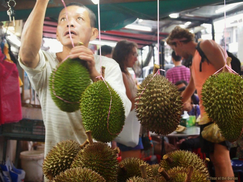 Durians for everybody!
