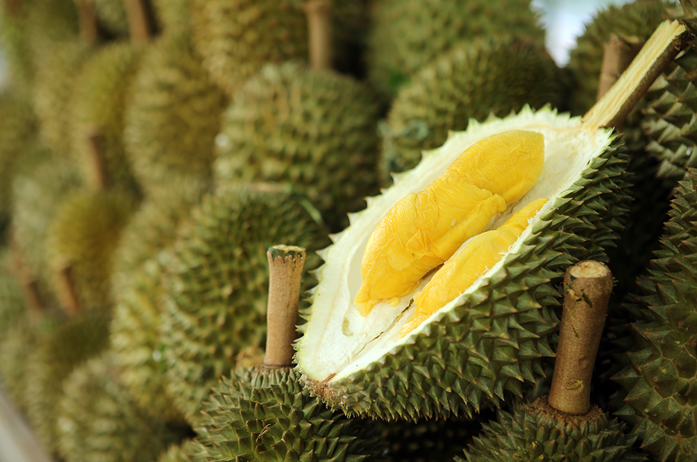 Bombs Away: Durian Smell Causes Massive Panic In Melbourne Library