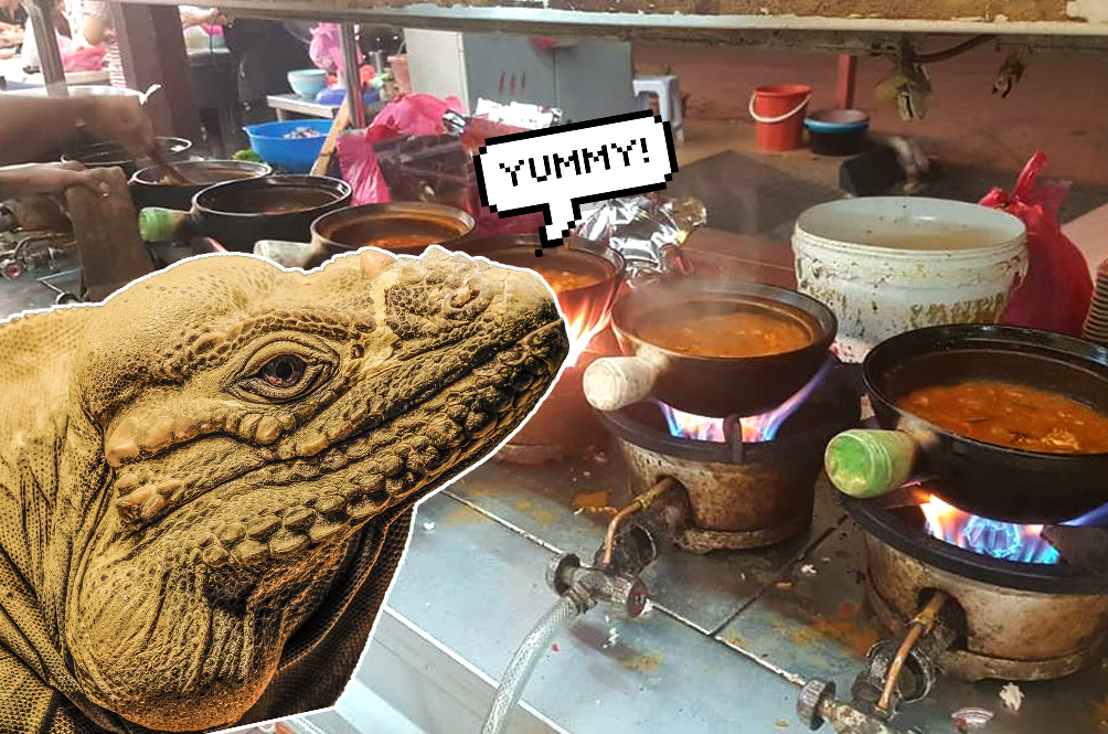 Guys, Are Your Tastebuds Ready For Some Monitor Lizard Claypot Curry?