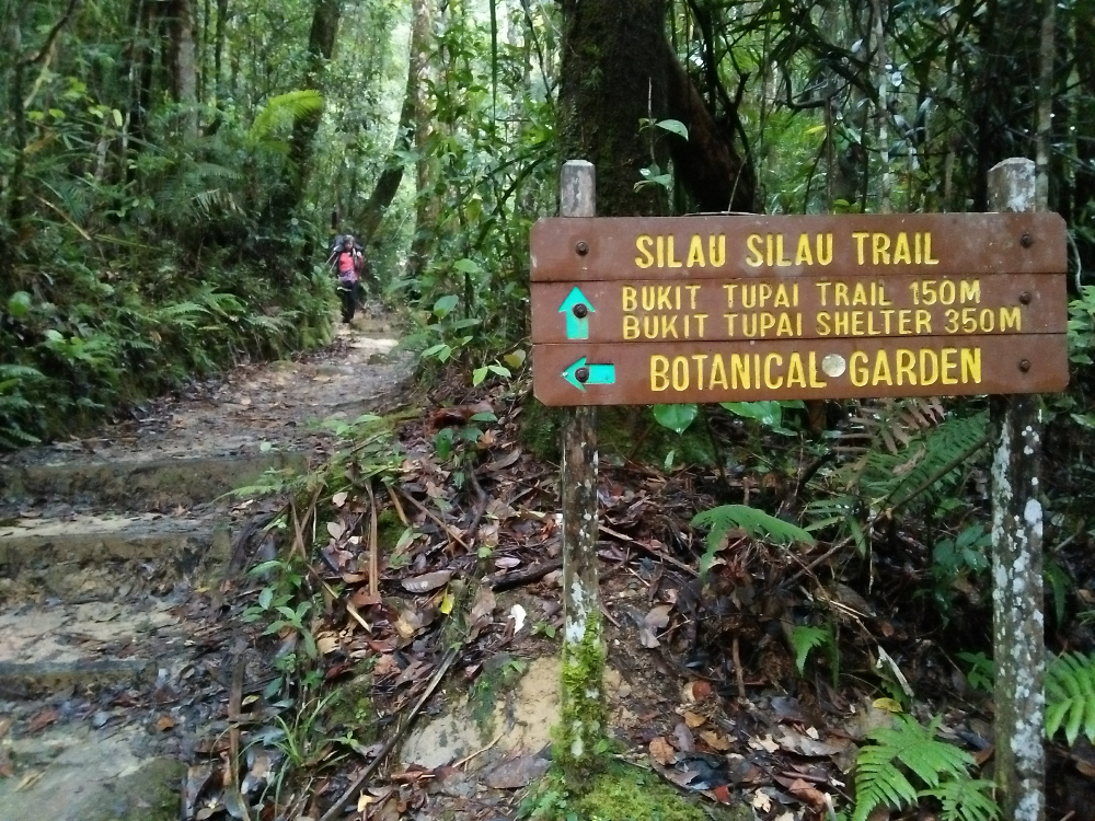 Stay clear of Kinabalu Park for now.