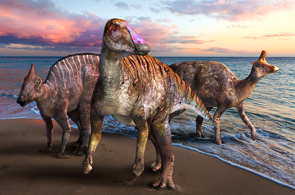 Japan Has Just Found New Dinosaur Fossils, And They Named It After The Japanese God Of Creation
