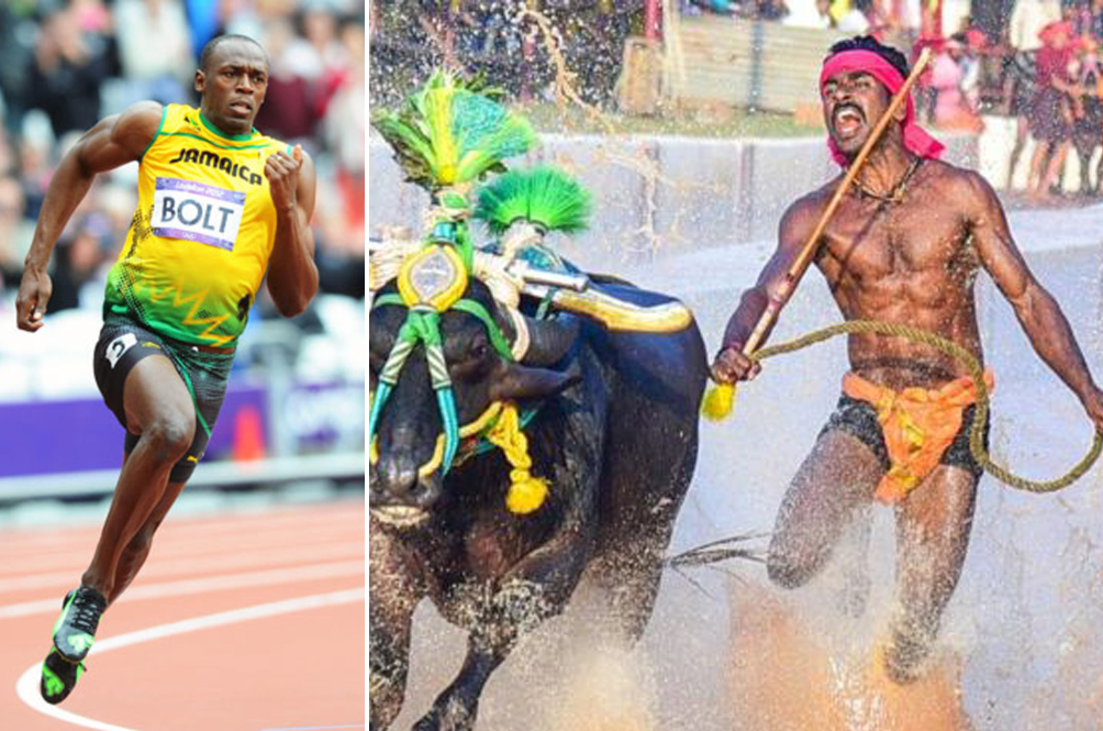 Indian Buffalo Racer May Dethrone Usain Bolt As Fastest Man In The World