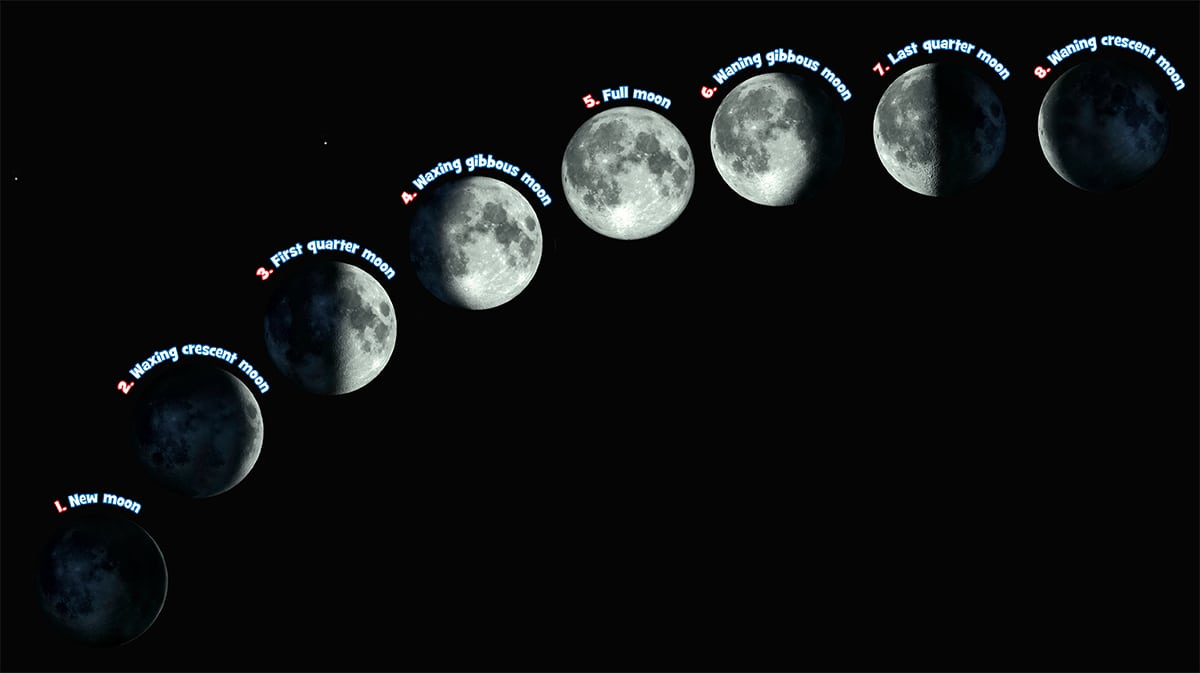 The many phases of the moon.