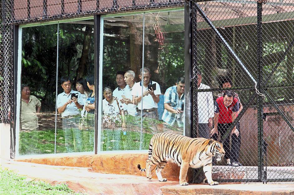 Welcome Back! Taiping Zoo And Night Safari Has Now Reopened For Business