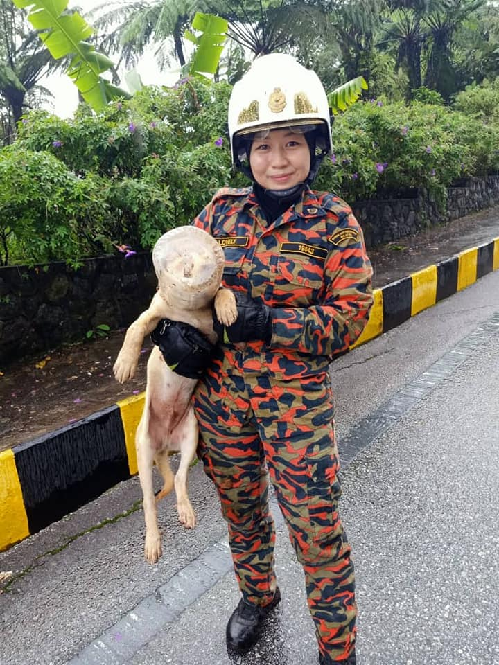 Kakak firefighter to the rescue.