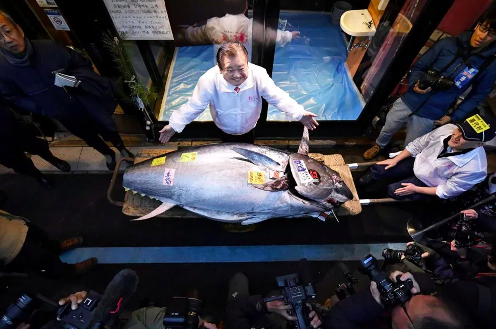 Japan's Tuna King Paid A Whopping RM7.4 Million To Buy A Bluefin Tuna