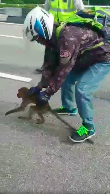 A good Samaritan to the rescue.