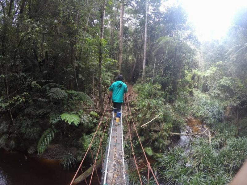 Trek di hutan Maliau Basin.