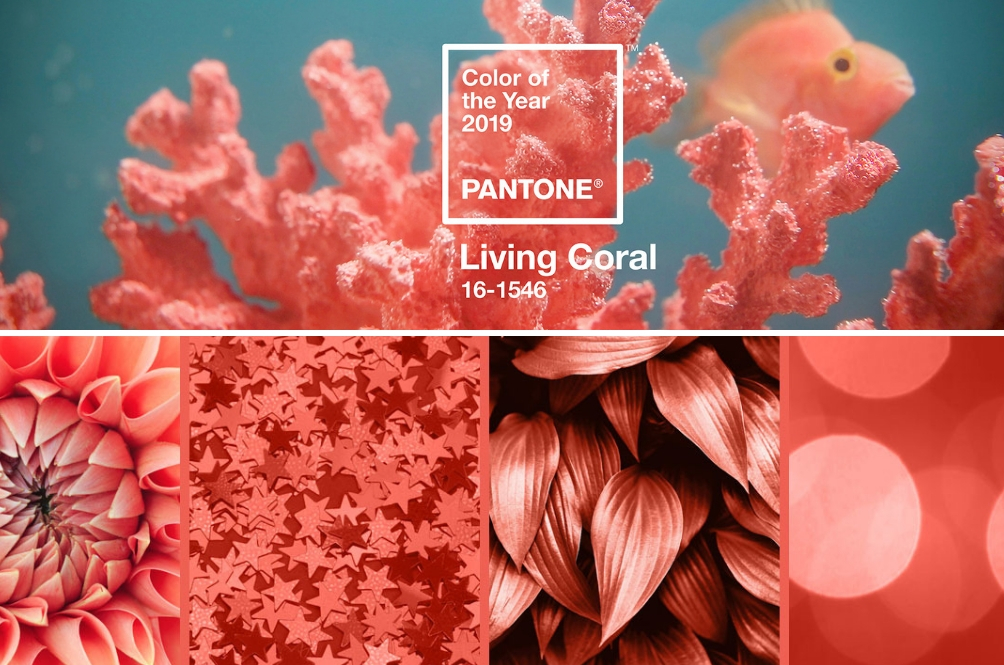 Color Of The Year 2019 - Memperkenalkan, Warna 'Living Coral'