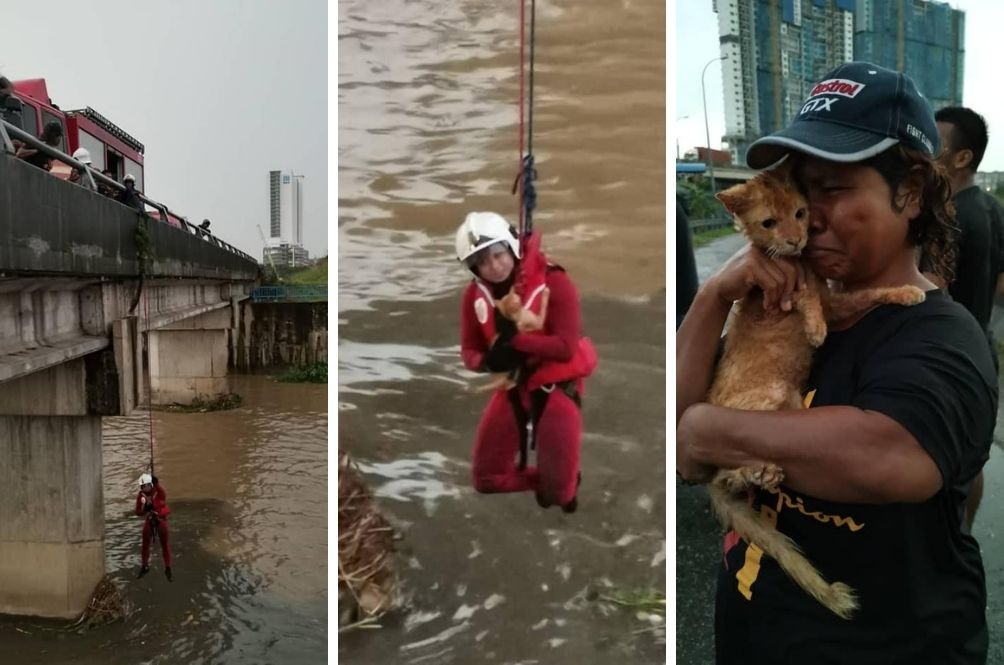 Brave Abang Bomba Goes To Great Lengths To Save Cat From Drowning In Puchong River