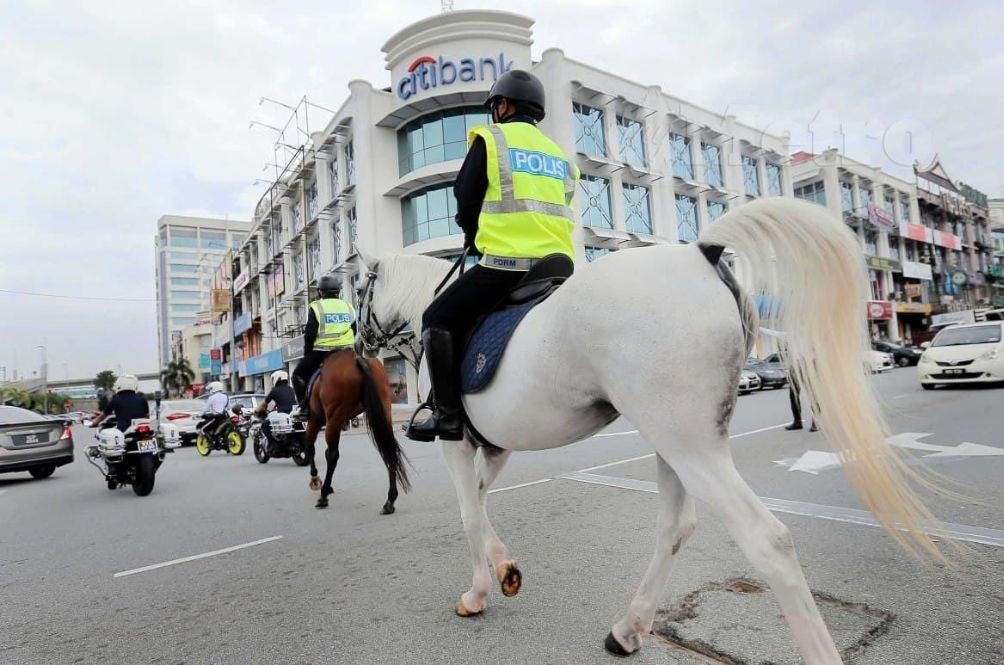 No Horsing Around! Police In Serdang Rope In Four-Legged Friends To Ensure COVID-19 SOP Compliance