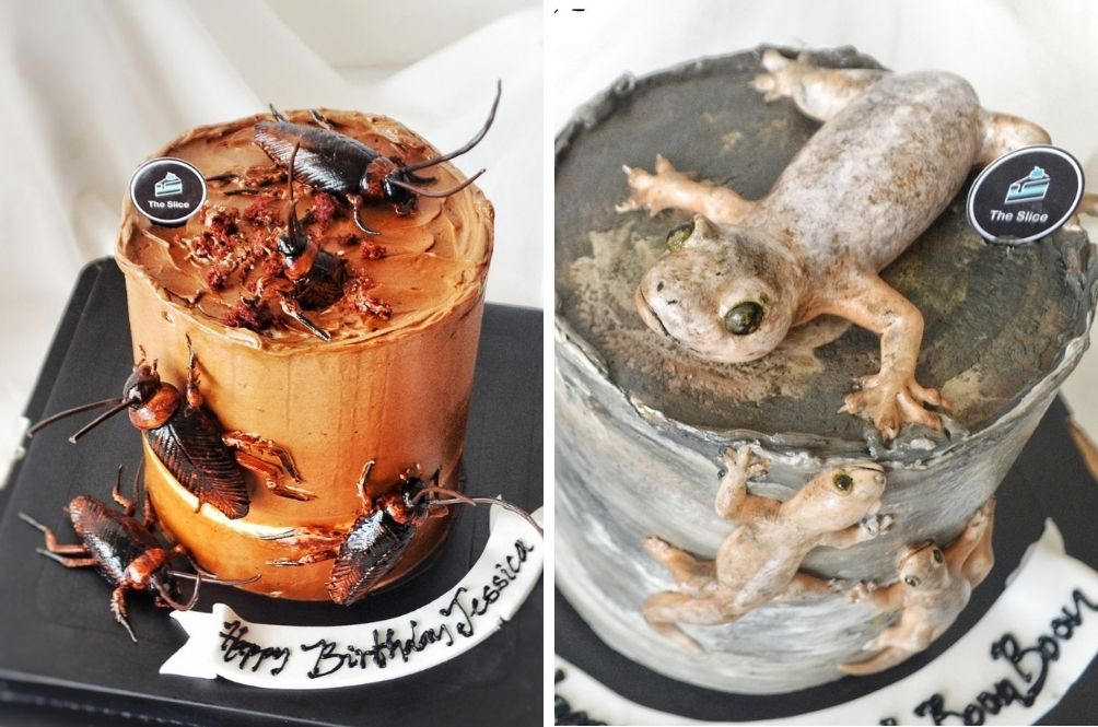 'It Was A Request': Ipoh-Based Homebaker Explains Creation Of Viral Life-Like Lizard And Cockroach Cakes