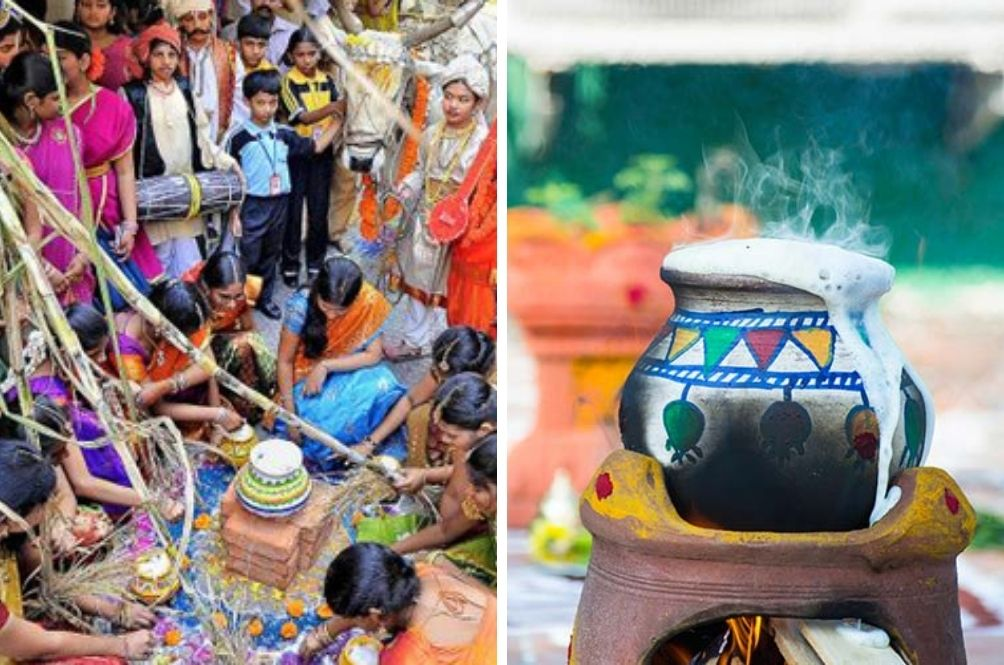 Pongal Oh Pongal! Here's What You Should Know About This Four-Day Tamil Harvest Festival