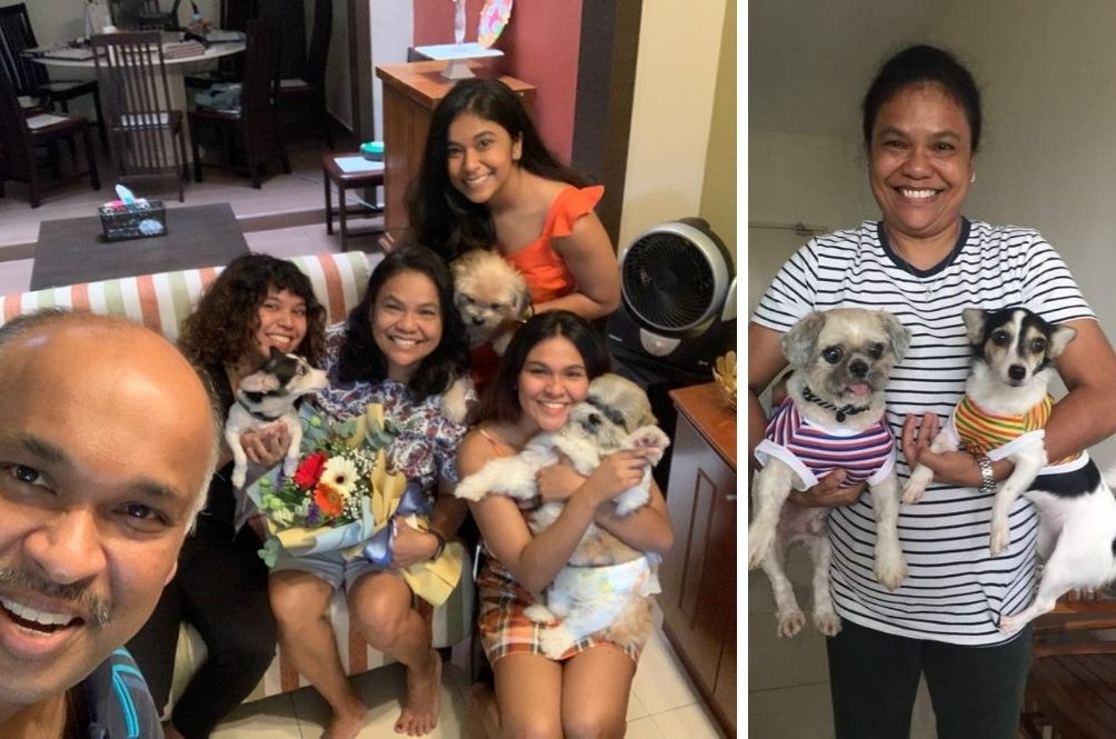 This Family From Johor Takes In Elderly Abandoned Dogs Just To Give Them A Proper Forever Home
