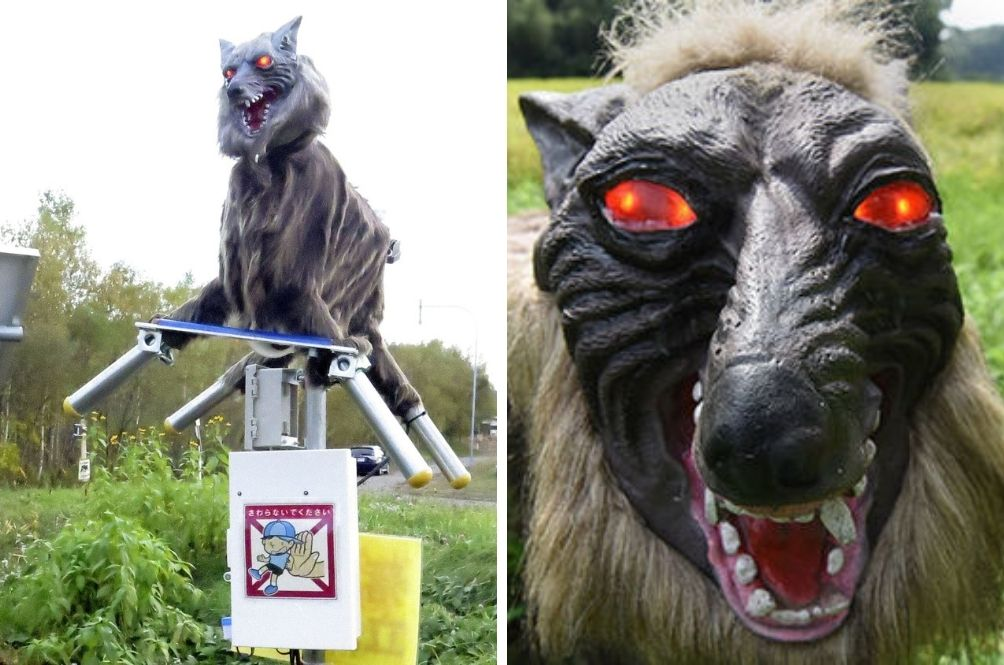 Japan Comes Up With Red-Eyed, Howling, 'Monster Wolf' Robots To Scare Away Wild Bears