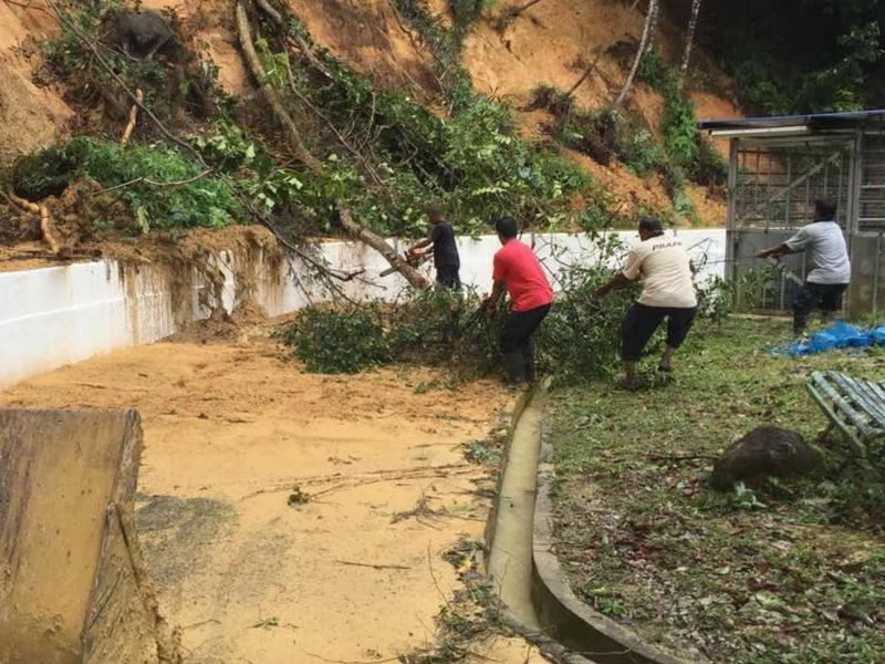 Staf Perbadanan Bekalan Air Pulau Pinang Sdn. Bhd. (PBAPP) membersihkan pokok tumbang di kawasan Loji Rawatan Air Guillemard.