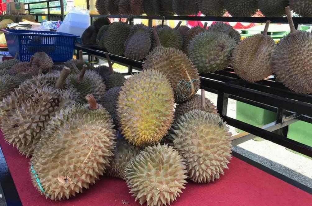 Mungkin Kita Tidak Dapat Makan Durian Lagi Lepas Ini