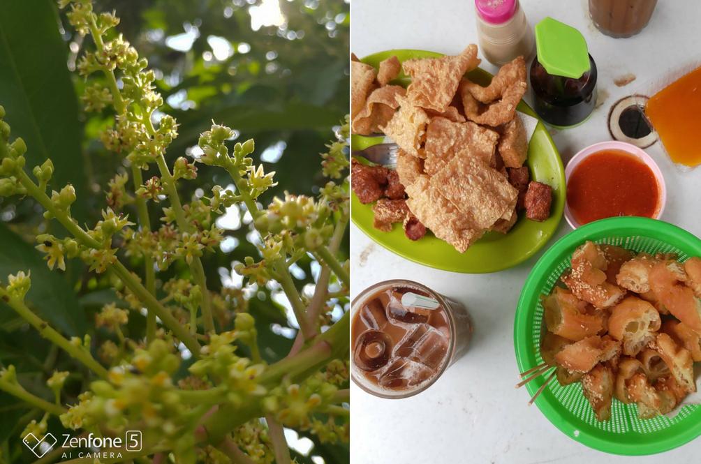 Lihat perincian pada gambar pokok dan makanan ini.