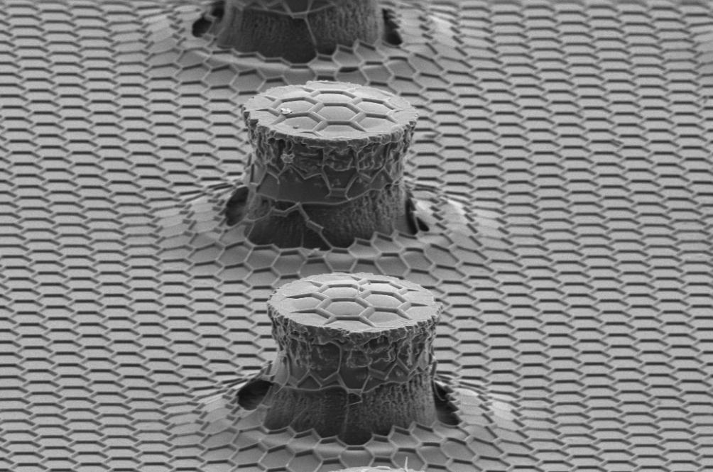 Corak mikroskopik.