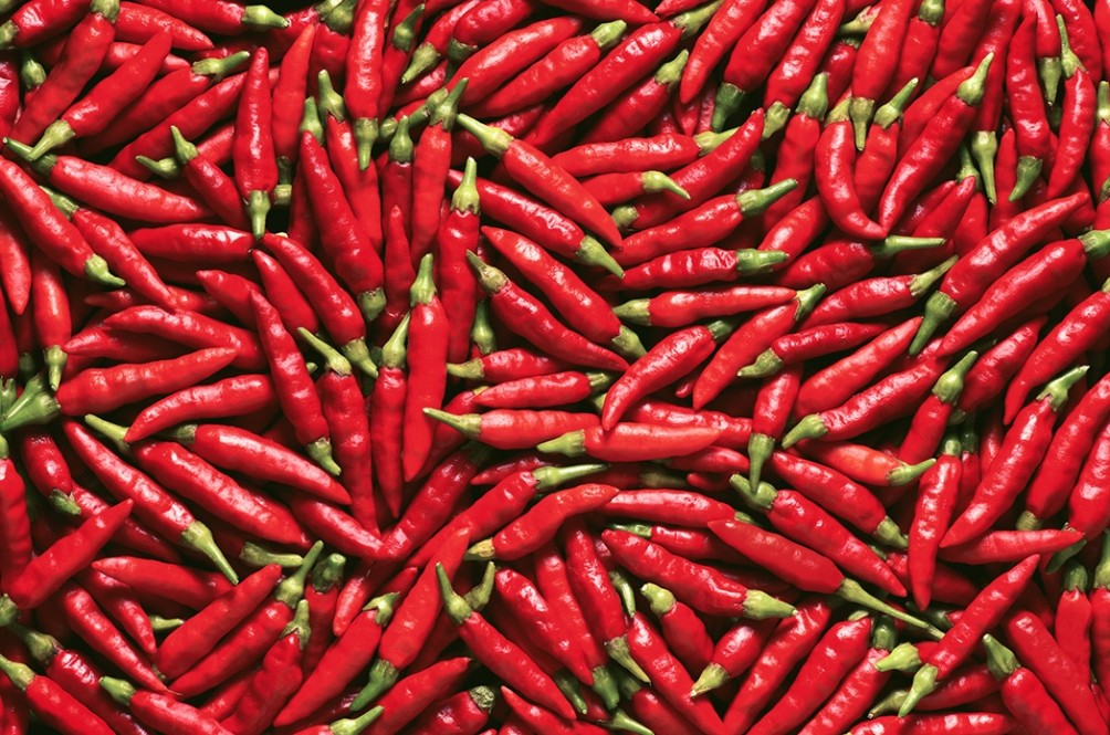 Chilli Here, Chilli There, Chilli Everywhere!