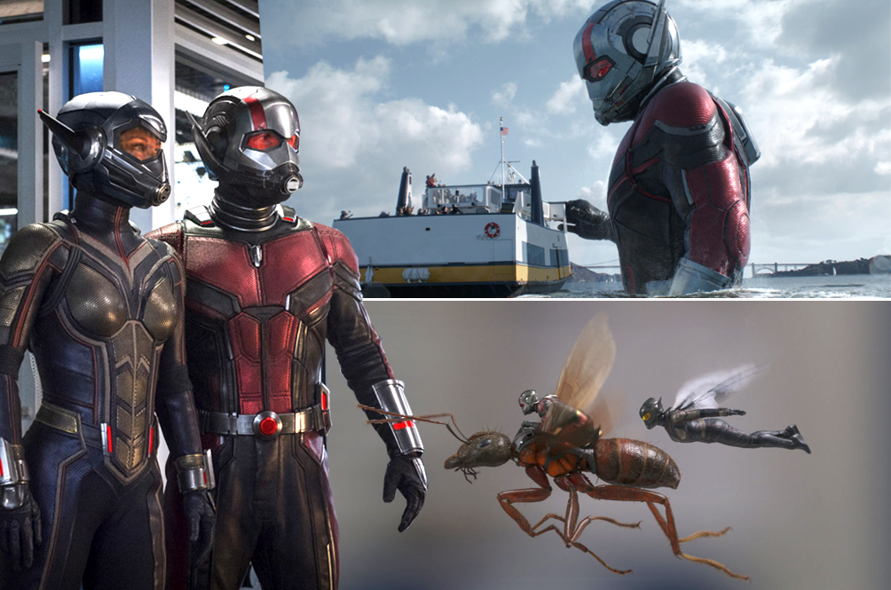 Here's Our Itsy-Bitsy,Teeny-Weeny Little Review Of 'Ant-Man And The Wasp'