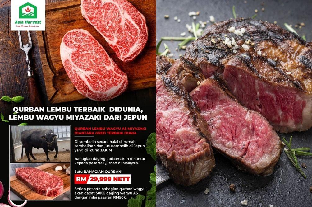 You Can Now Perform 'Korban' Using This RM30,000 Wagyu Beef On Hari Raya Aidiladha