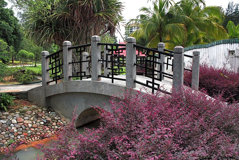 They even have themed areas such as this beautiful 'Little China' bridge.