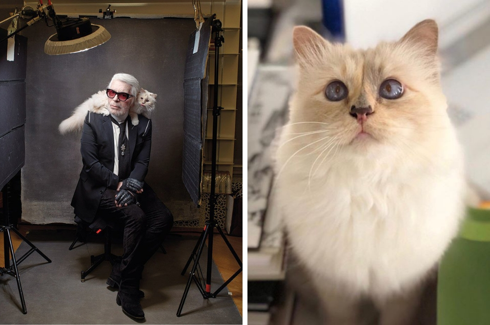 Karl Lagerfeld's Beloved Cat, Choupette, May Inherit RM796 MILLION From The Late Designer