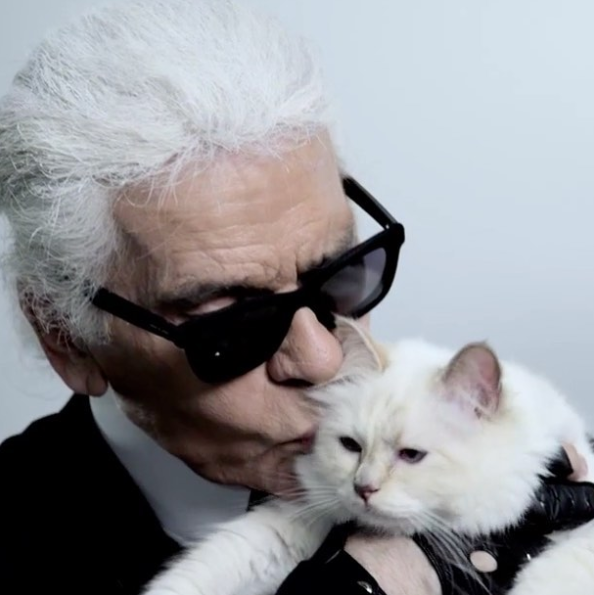 Karl saw Choupette more than just a cat, she's her life companion.