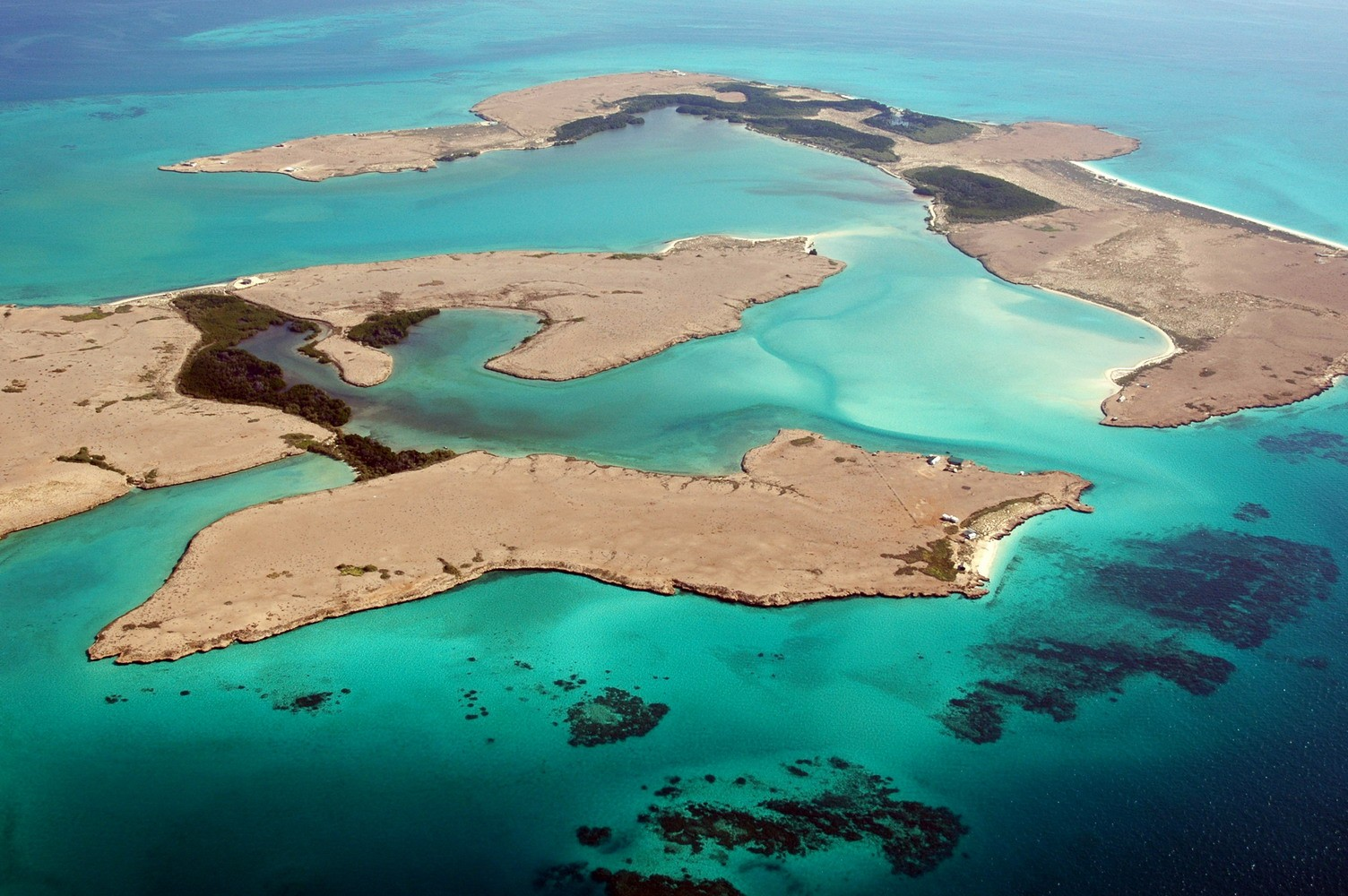 Head to Moucha Island to experience the vast marine life and of course whale sharks!