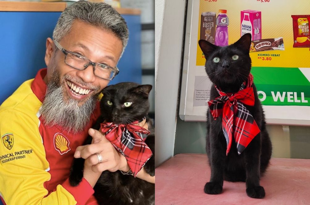 Black Cat Officially Appointed As 'Chief Receptionist' At Shell Petrol Station In PJ