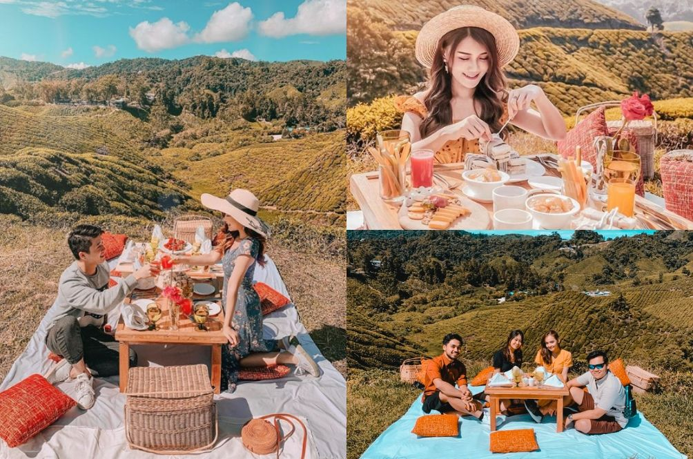 This Instagrammable Picnic Spot In Cameron Highlands Is What Dreams Are Made Of