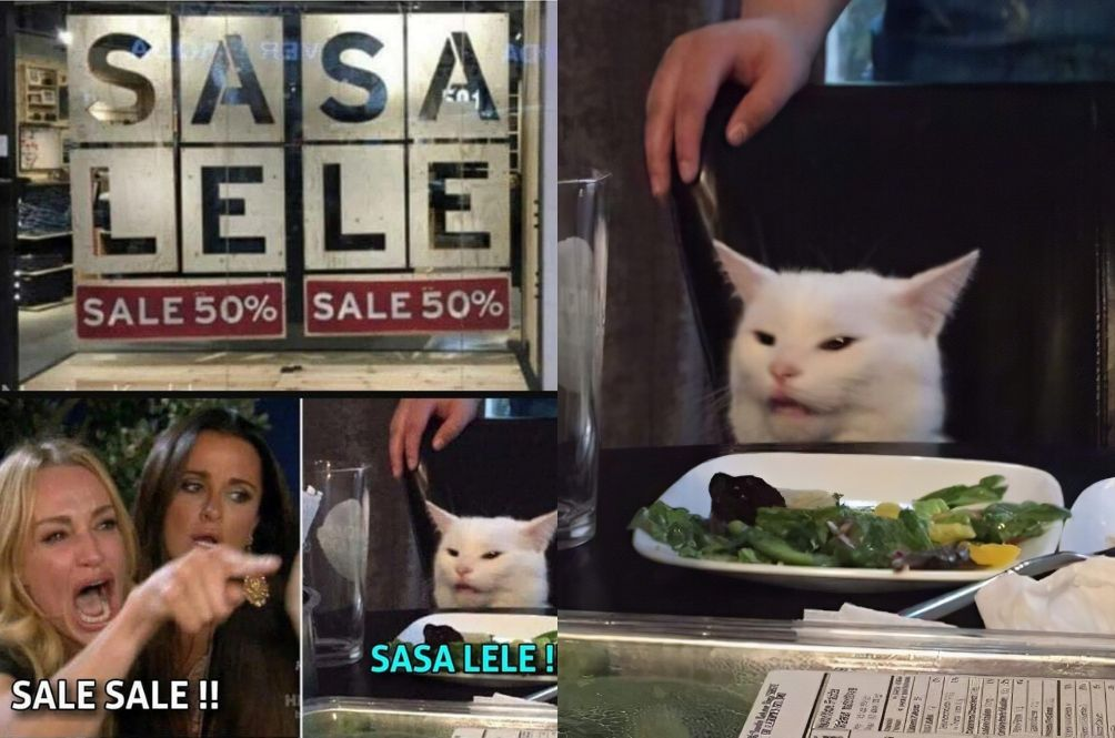 Get To Know The Table Cat Behind The Hilarious 'SASA LELE' Meme And Many More