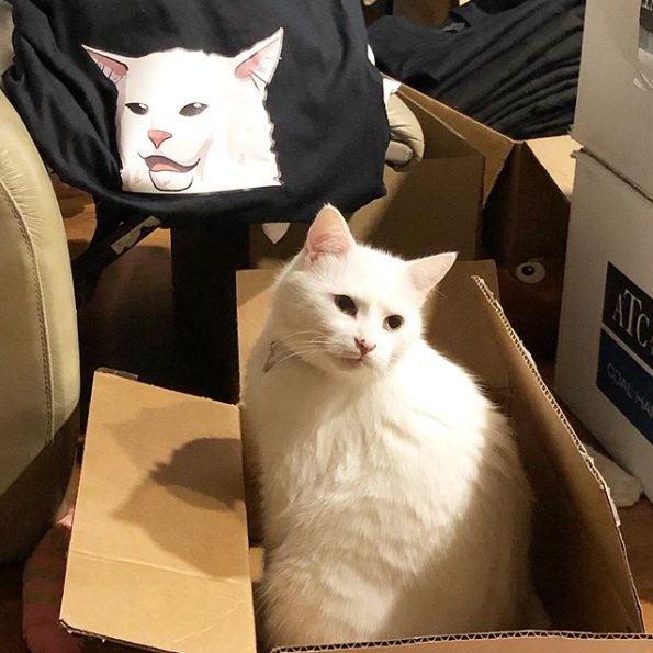 Smudge even has his own merch line!