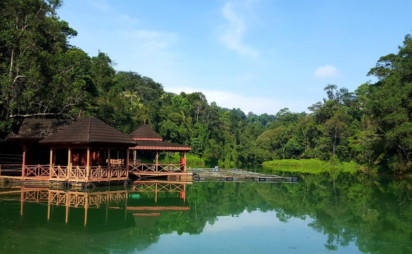 You can make a pit stop at this hut and enjoy this serene view.