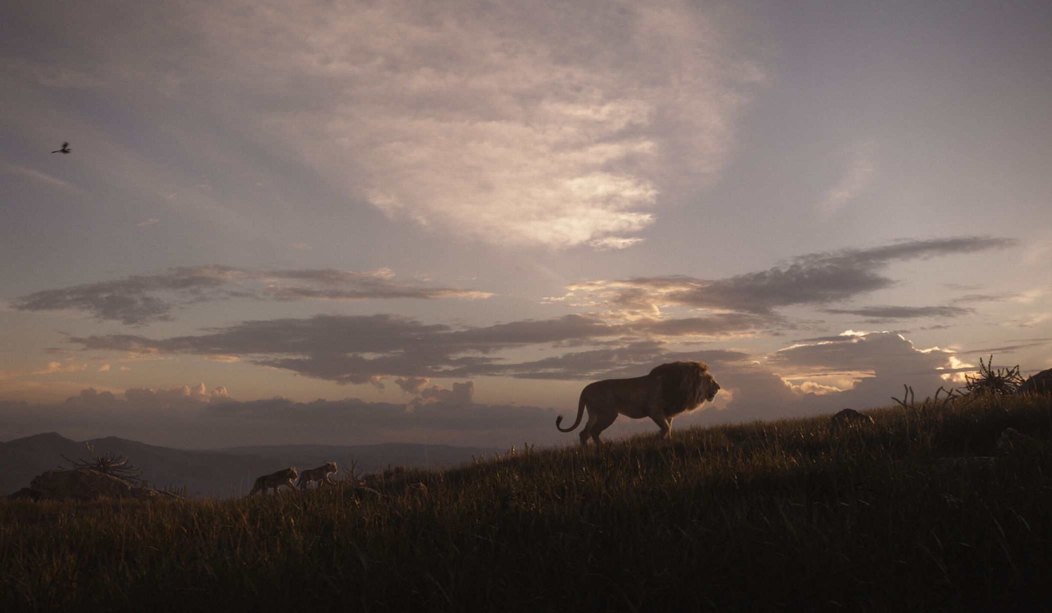 The sights and sounds of Africa are seen throughout the film.