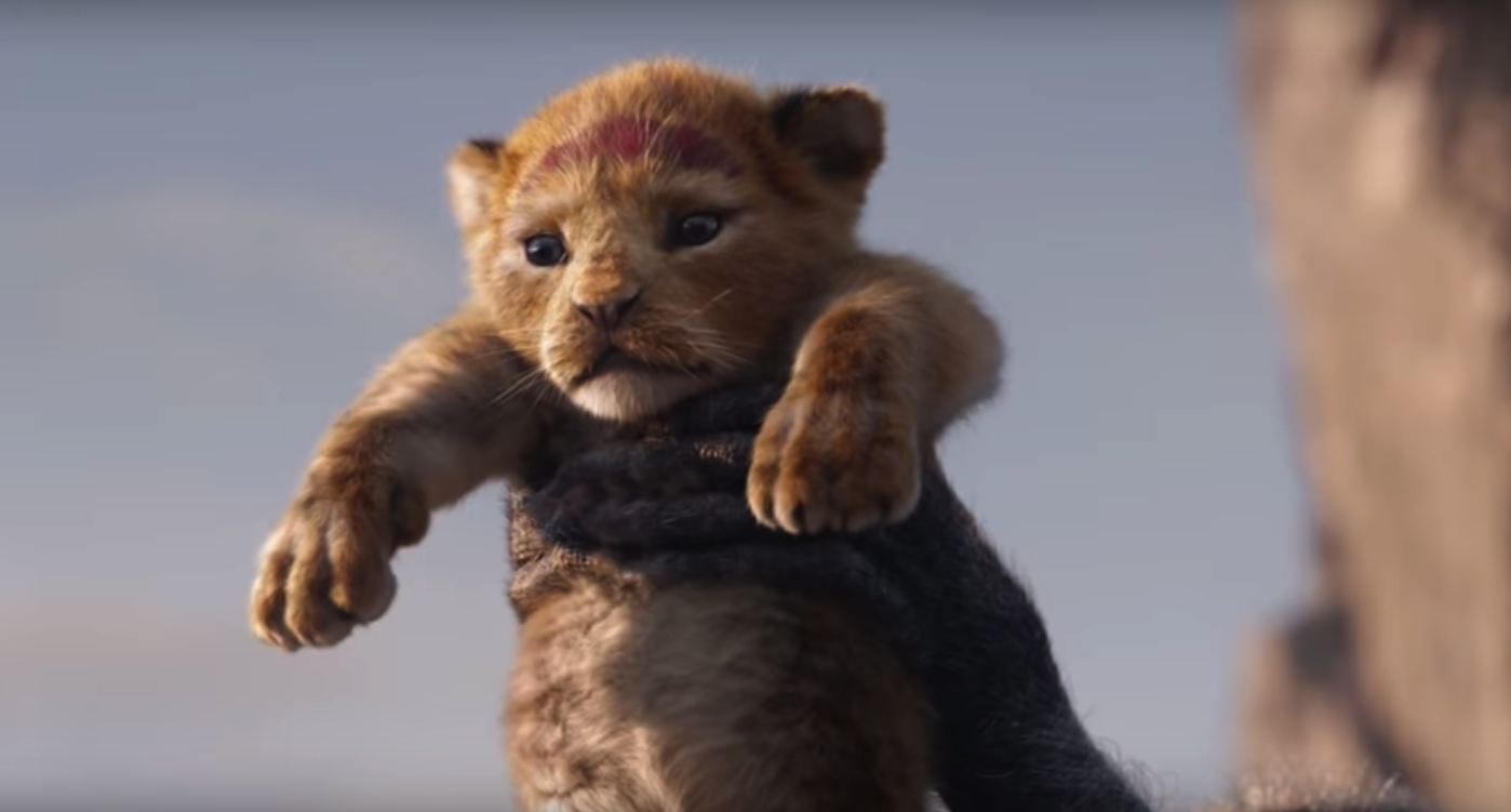 Isn't baby Simba adorable?