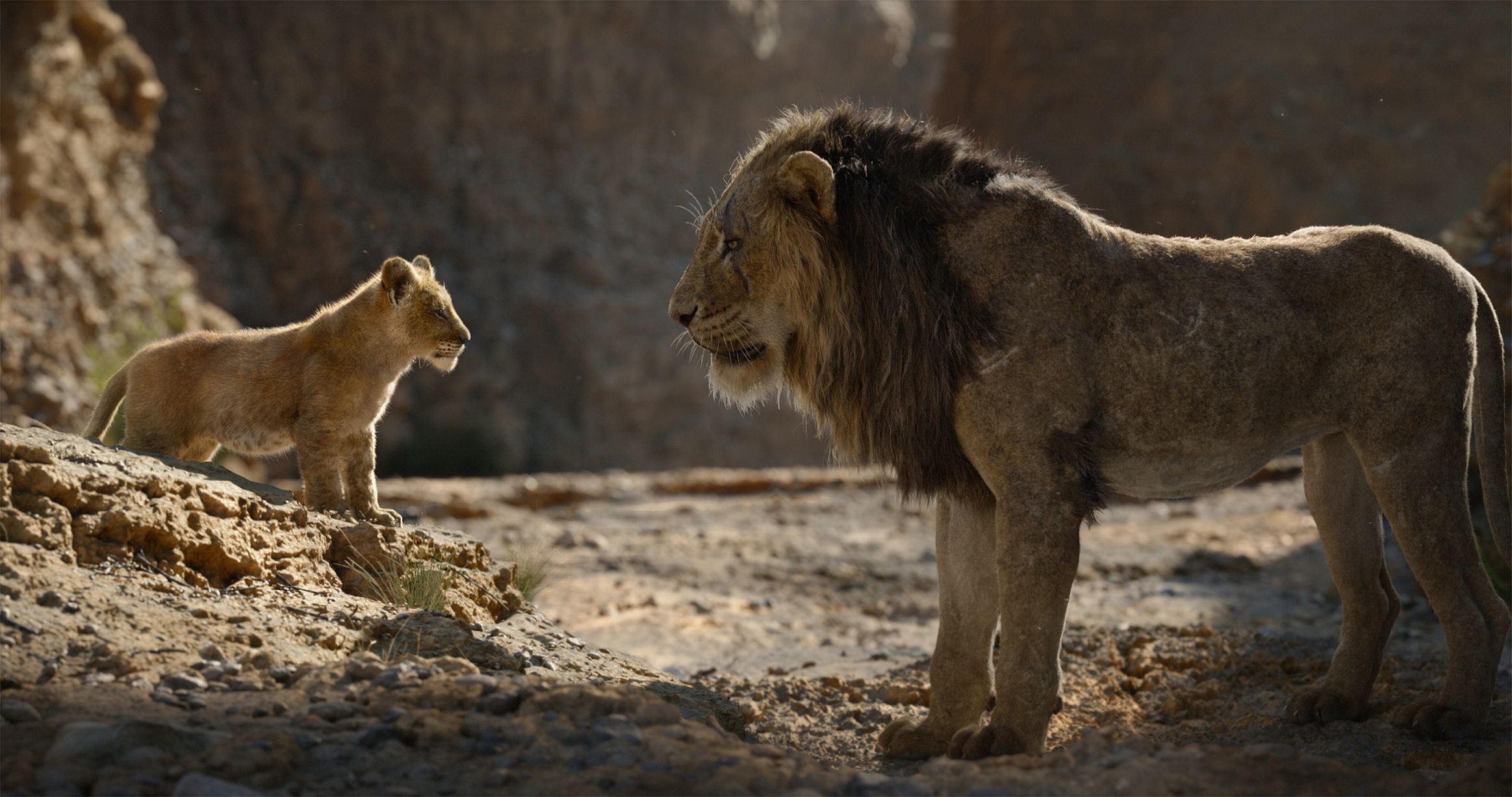 Young Simba goes face-to-face with Scar.