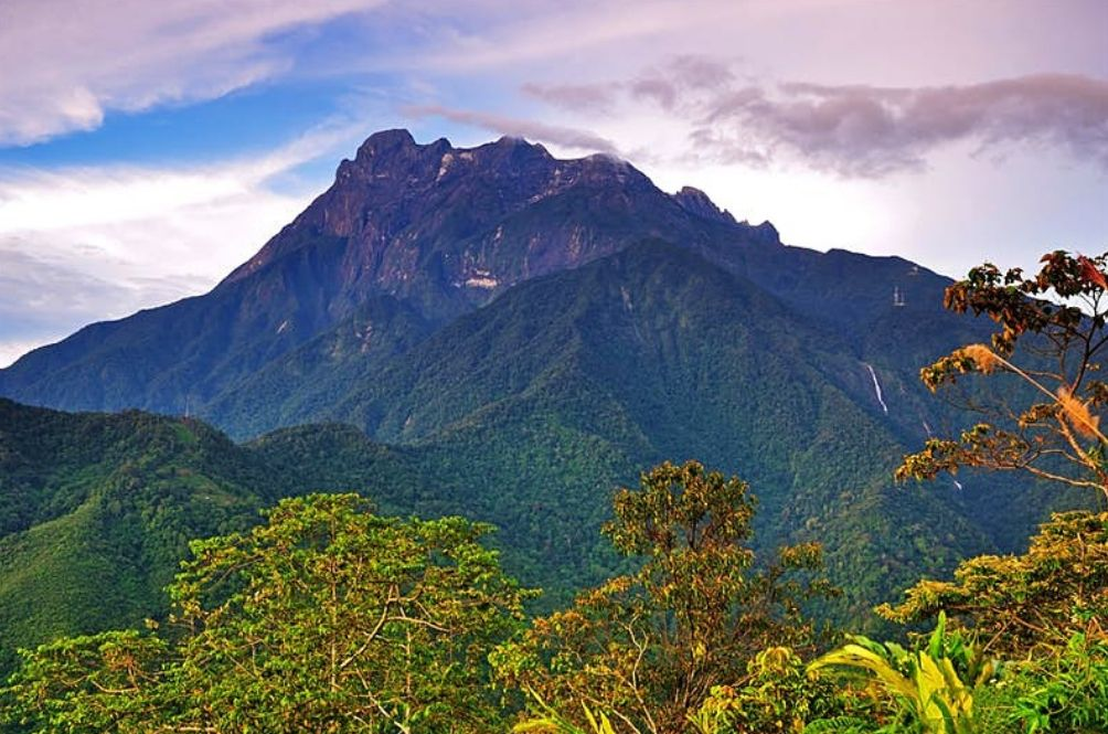 The Flora And Fauna You Can Find On Gunung Kinabalu