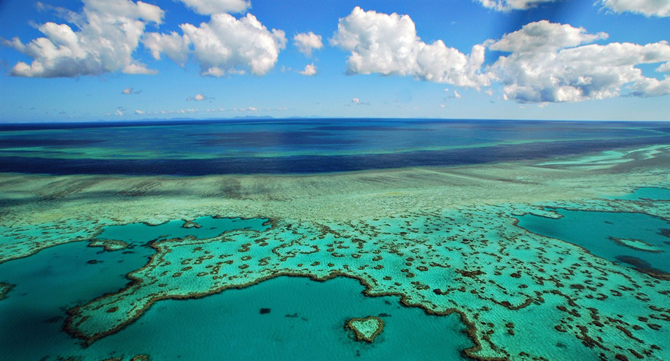 Did you know that the Great Barrier Reef can be seen from outer space?