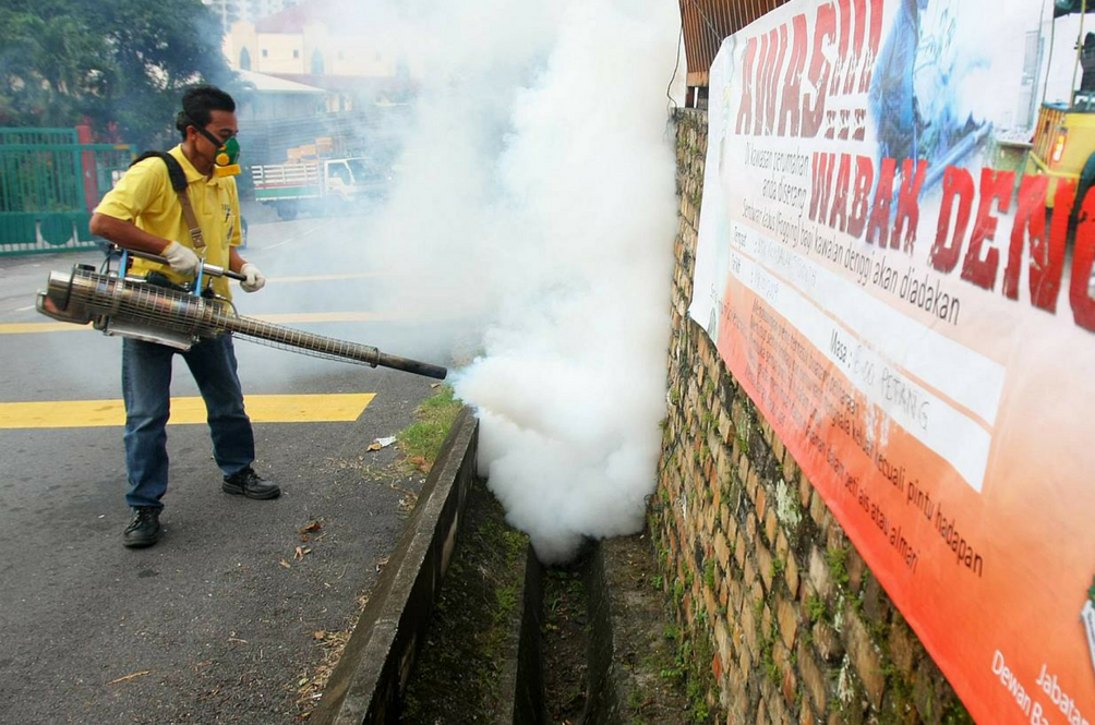 The Number Of Dengue Cases Has Dropped In The Past Year