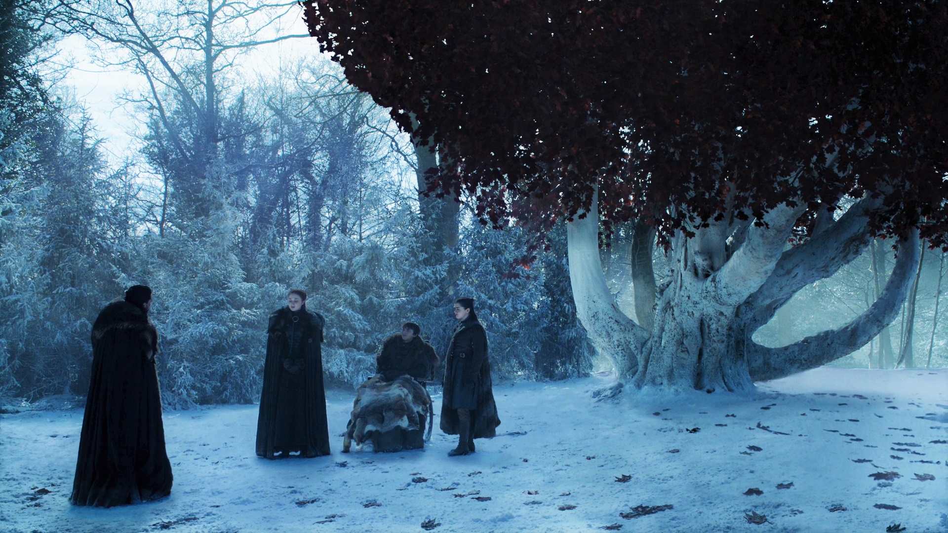 Be a tree and leave, Bran.