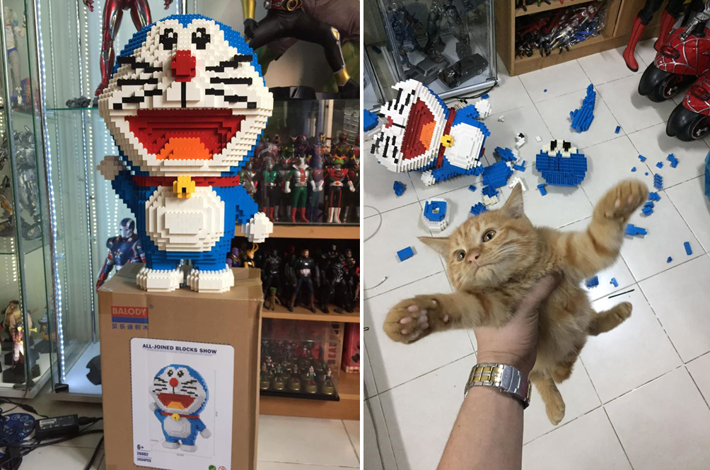 Kitty Cat Destroys Owner's 2,434-Piece Doraemon Figurine, Not Sorry At All