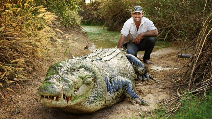 Matt Wright and a fellow crocodile friend.