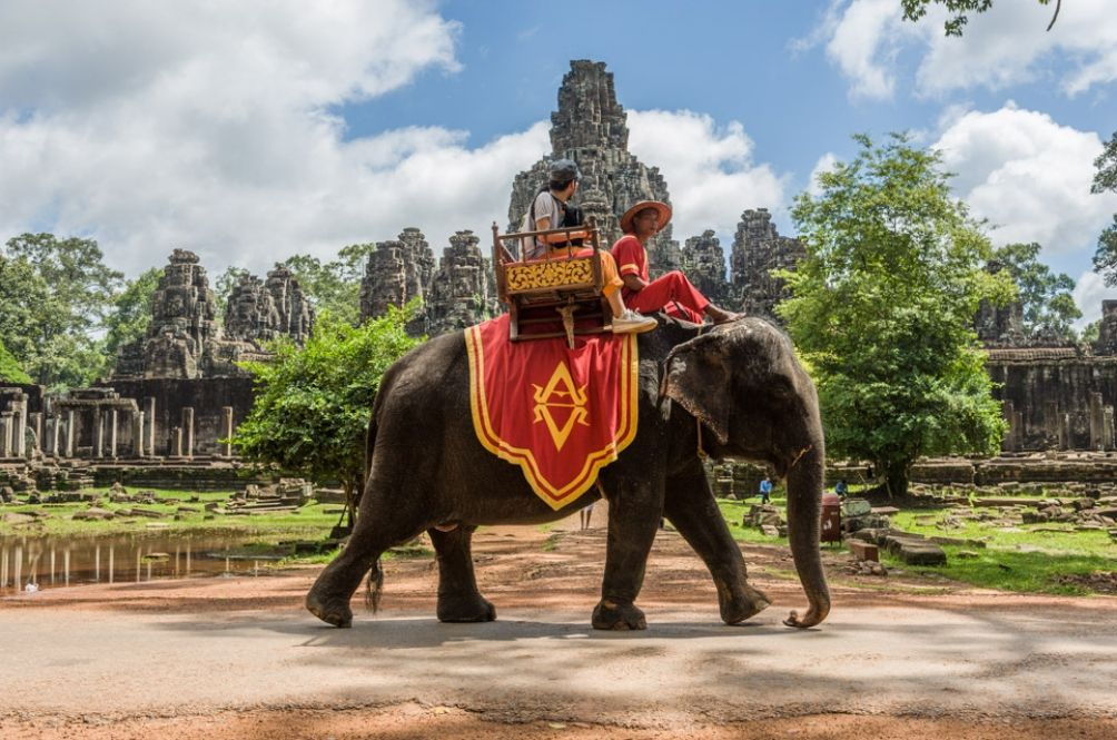 Ban On All Elephant Rides At Angkor Temples To Take Effect Early 2020