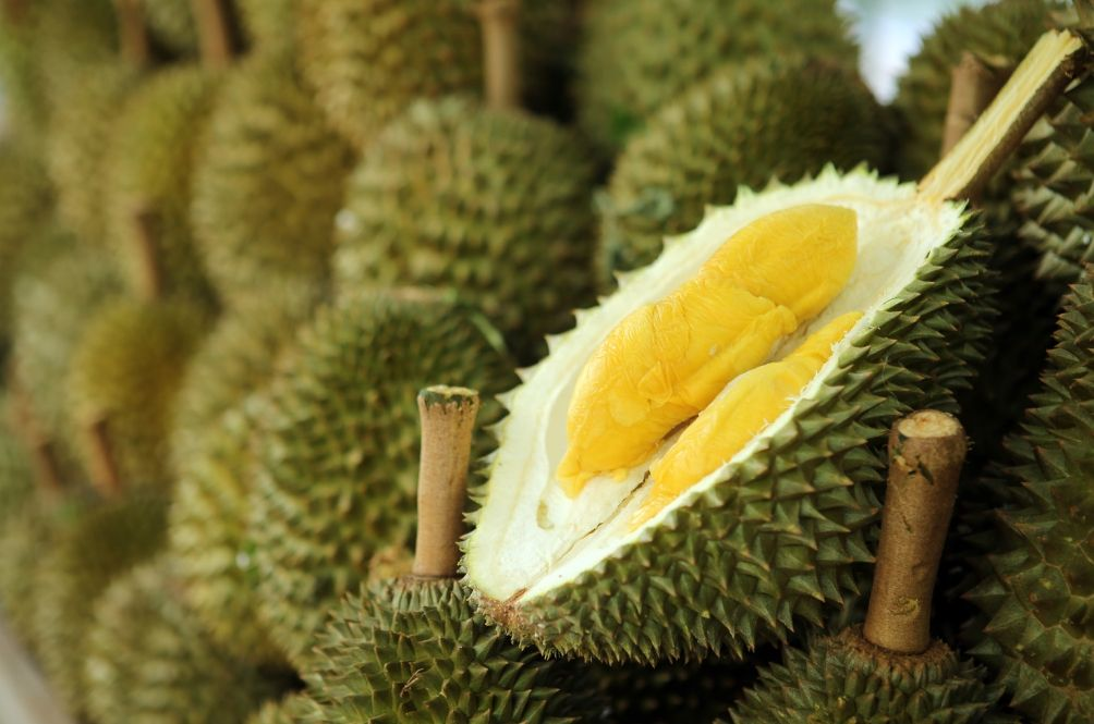 Fill Your Bags With Durians Until It's Full For Only RM10 At This Durian Stall
